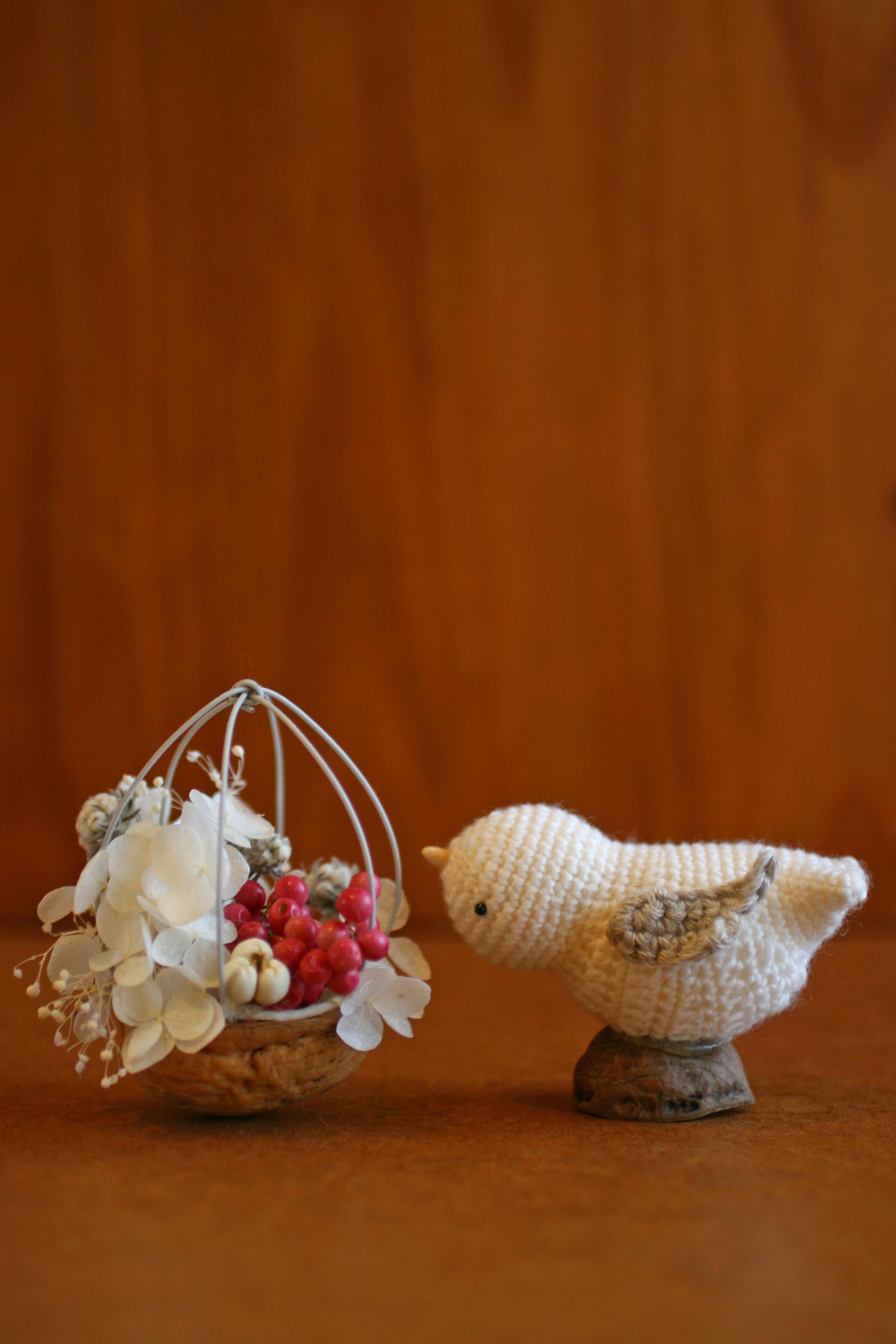 クラフト用菓子くるみの殻